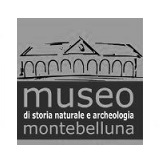 Museo Bellona